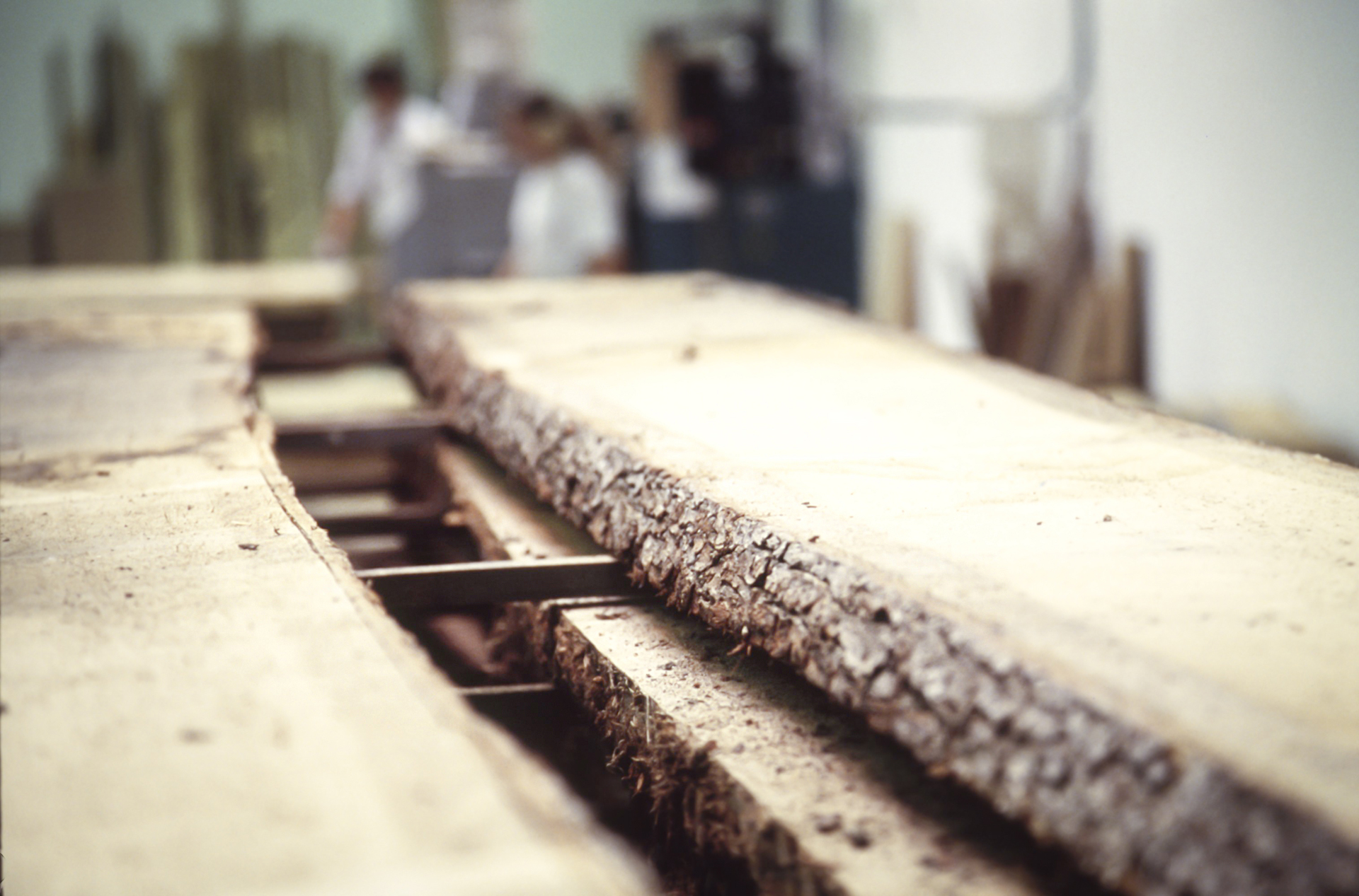 Prednosti dubového dreva