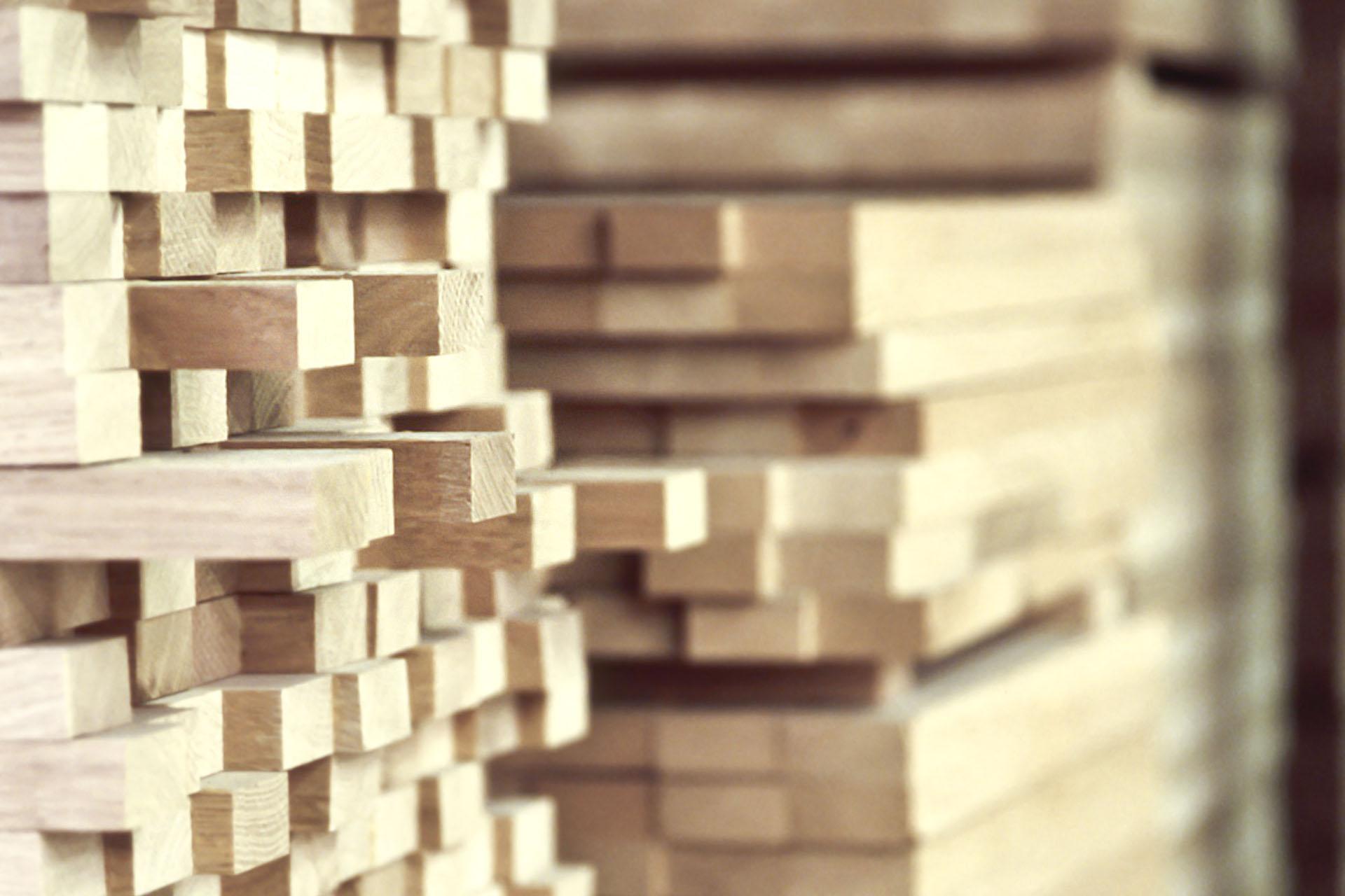 Properties of beech wood